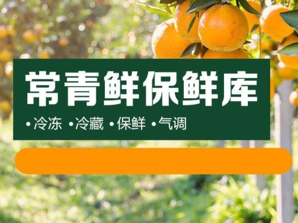 四川常青鲜农业有限公司